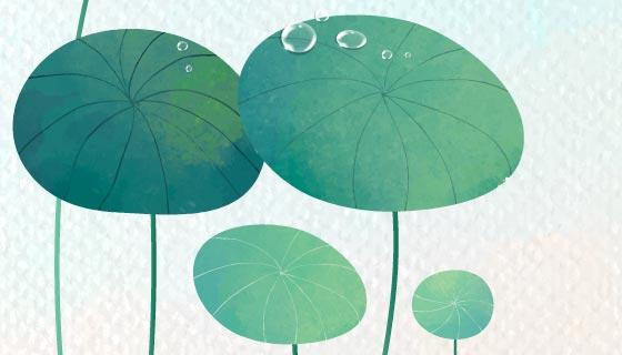 逼真的绿叶和水滴矢量素材(EPS)
