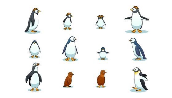 各种各样姿势的企鹅集合矢量素材(EPS/PNG)
