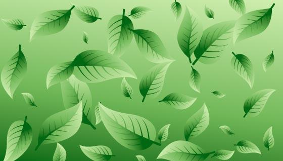 清新的绿叶背景矢量素材(EPS)