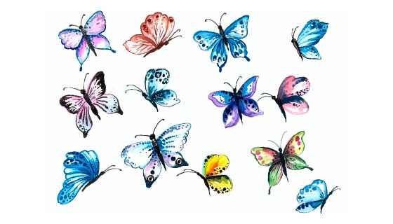 水彩风格的漂亮蝴蝶矢量素材(EPS)